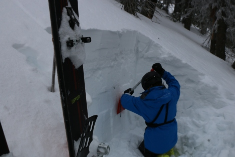 Taking a look at the snowpack we were dealing with. (Cam Stuchly Photo)